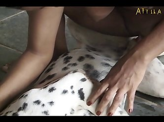 Brown Beauty And Horny Dalmatian (part 2)