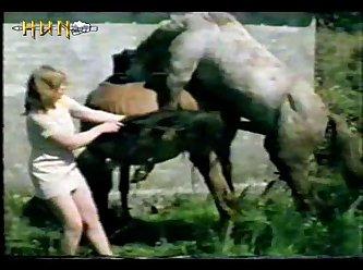 Animal Sex Mix Farm Sex (horse, Dog, Chicken, Donkey) 15'45 (part 1)