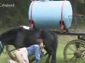 3d Horse Xxx