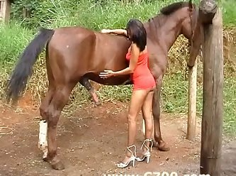 Each Were Jacking Their Pricks As They Looked Down At Horse Addicted Teen As She Lay On Her Back Together With Her Pussy