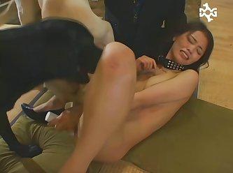 Sensual  Dog Sex